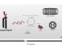 La escala del univers: moléculas y átomos
