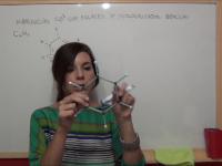 Hibridación sp2 con enlaces dobles deslocalizados: benceno