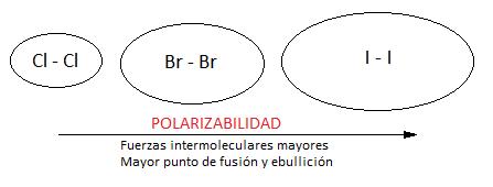 Polarizabilidad de las moléculas apolares en función de la masa molecular