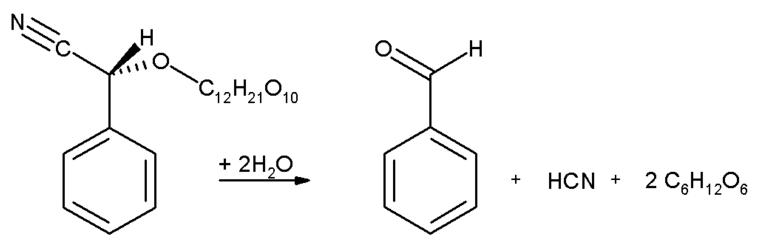 Producción de cianuro, benzaldehído y glucosa por descomposición de amigdalina