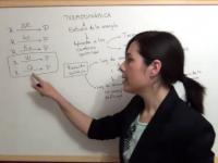 Primer apartado de termodinámica química