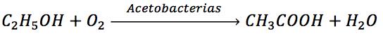 El etanol se transforma en ácido acético mediante la acción de las acetobacterias
