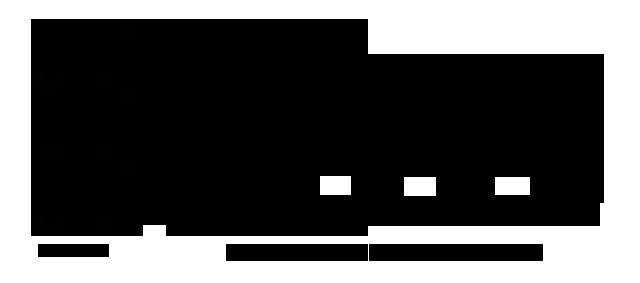 Triglicérido con distintas cadenas carbonadas