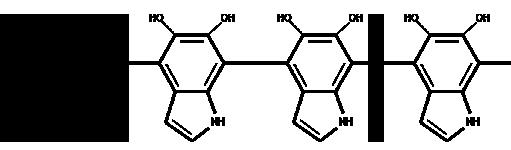 Un polímero conductor: la polimelanina