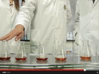 Formación de yodo a distintas concentraciones iniciales, velocidad de reacción