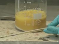 Mezcla de ácido sulfúrico y sacarosa