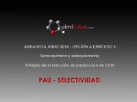 Ejercicio selectividad Andalucía (junio 2014) termoquímica y estequiometría