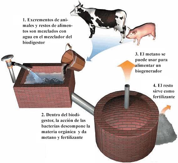 Generación sencilla de biogás