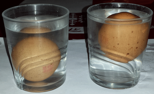Huevos en agua del grifo y en agua salada