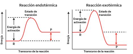 Diagramas de energía de una reacción endotérmica y exotérmica