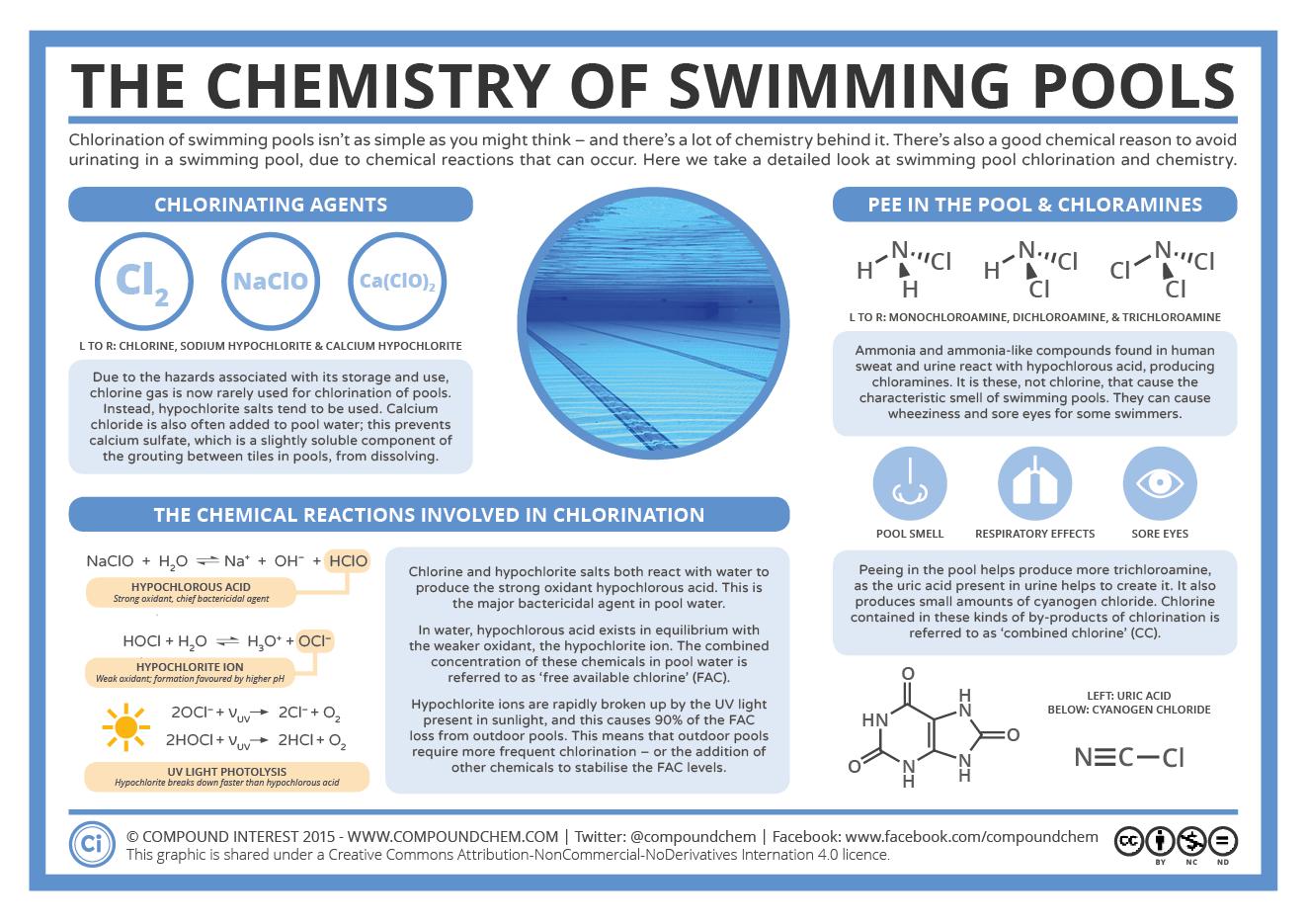 Química veraniega: ¿qué pasa si orinamos en una piscina?