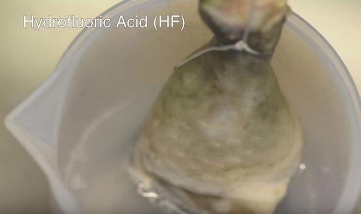 Muslo de pollo en HF