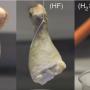 Muslos de pollo en ácido